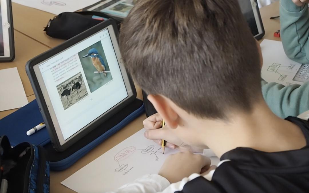 Audiovisual: Els 4 pilars de l'Educació – Escola Montserratina
